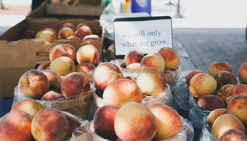 Farm grown fruit for sale